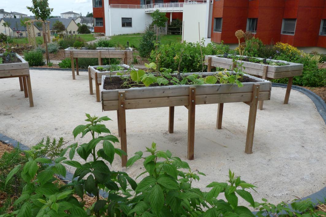 Chpc actualit inauguration jardin th rapeutique for Jardin therapeutique